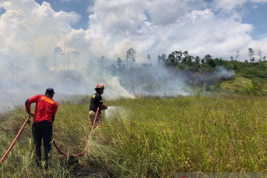 Tiga hektare lahan terbakar di Lembah Seulawah Aceh