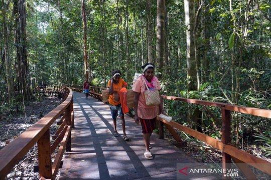 Aktivis: Peningkatan peran perempuan perkuat pembangunan wilayah Papua