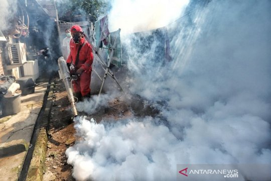 Saat pandemi,  18 kasus DBD terjadi di Kota Baubau-Sultra