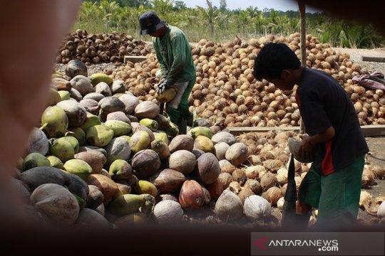 Ekspor pertanian di Sumatera Selatan yang kian menjanjikan