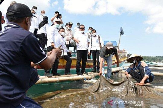 Menteri KKP tegaskan perangi penyelundupan ekspor benur