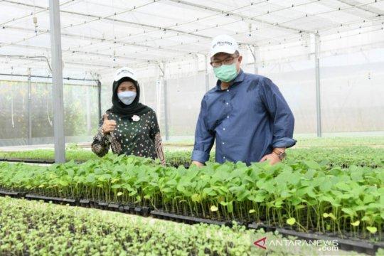 Desy Ratnasari kunjungi taman teknologi agribisnis di IPB University