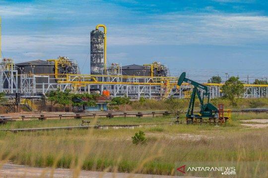 IEW: PLN miliki landasan hukum pasok listrik Blok Rokan