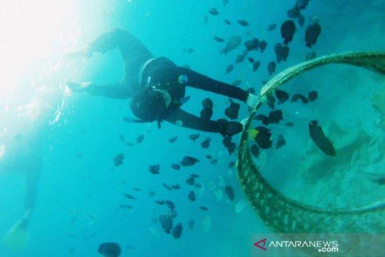 Disbudpar Aceh kembangkan potensi wisata  di Pulau Banyak, Singkil