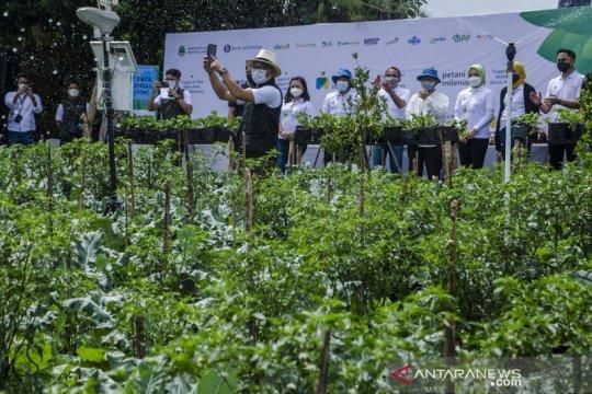 Gaet generasi muda, Jabar luncurkan program Petani Milenial
