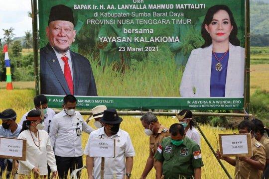 Ketua DPD berharap Bulog serap maksimal beras petani
