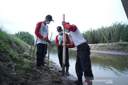 Tagana tanam 20 ribu bibit mangrove di Pangandaran