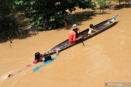 Banjir akibat tingginya intensitas hujan di Aceh Barat