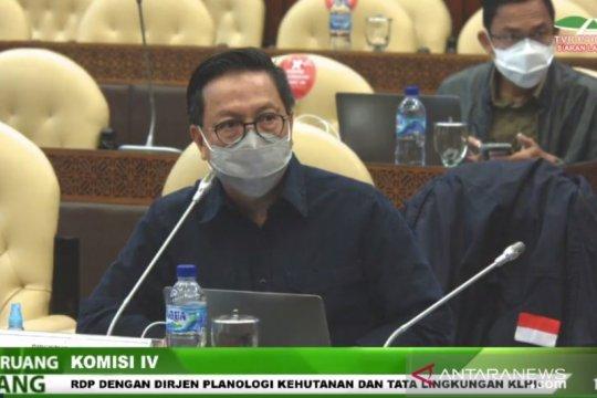 Pelanggar aturan kehutanan hadapi sanksi pemblokiran hingga penahanan