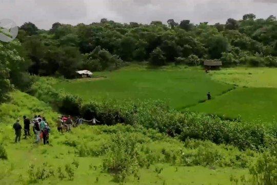 Restorasi hutan, para pencinta alam tanam pohon di Mumbai