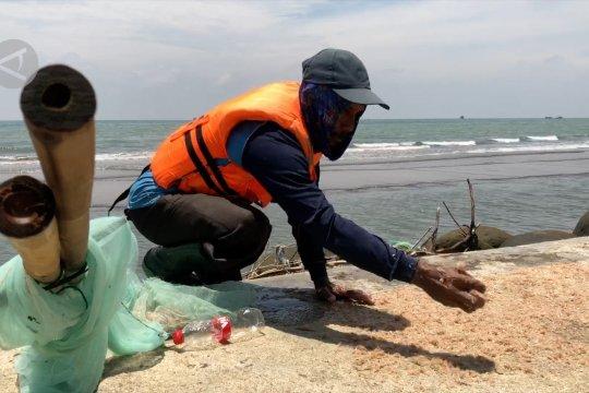Nelayan Pekalongan tingkatkan nilai ekonomi hasil panen udang rebon