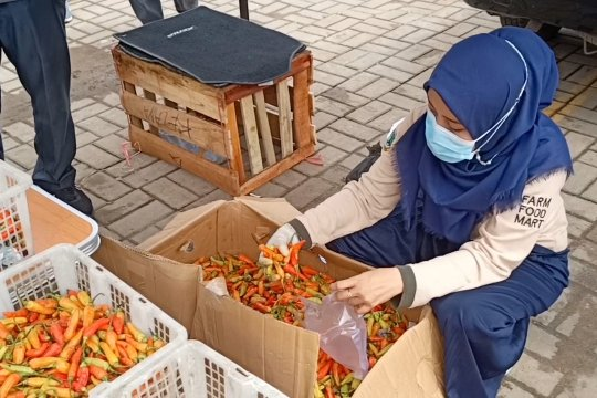 Disdagin Cilegon dan Banten stabilkan harga rawit merah
