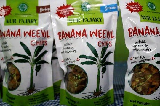 Keripik bonggol pisang Purworejo tembus pasar ekspor