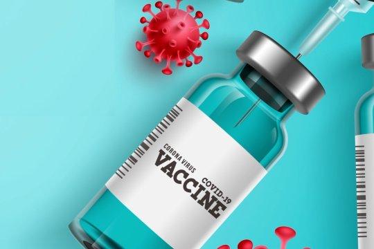 Indonesia duduki posisi puncak program vaksinasi di Asia Tenggara