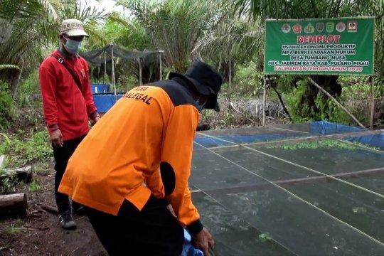 KLHK dorong intensifikasi budi daya untuk cegah karhutla di Kalteng