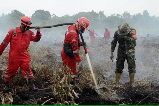 3 hari belum padam, lahan gambut sulitkan pemadaman di Kampar Riau