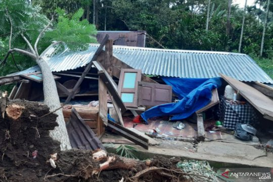 Angin kencang tumbangkan pohon dan rusak sejumlah rumah di Tanah Datar