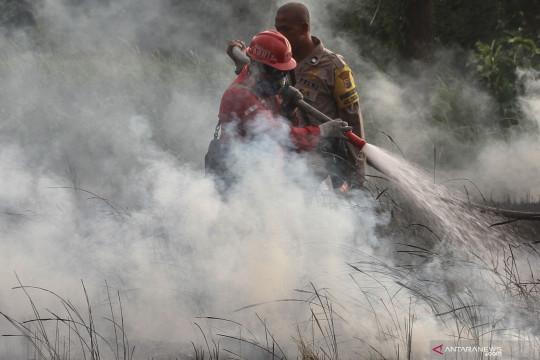 901 hektare lahan di Riau terbakar selama paruh pertama tahun 2021
