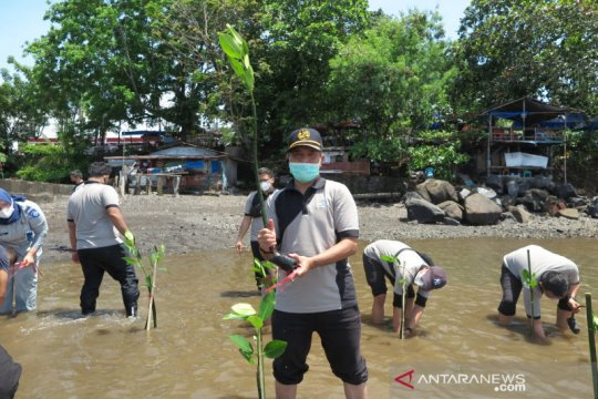 Jasa Raharja Sulut lakukan penanaman mangrove di Pantai Malalayang