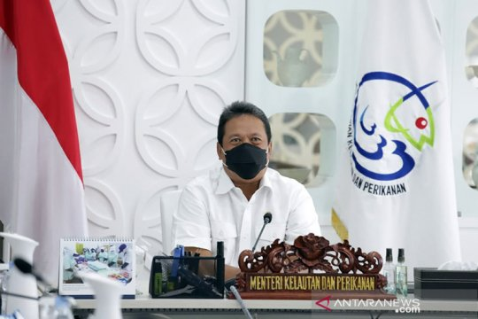 Menteri Trenggono: Aktivitas ekonomi di laut harus ramah lingkungan