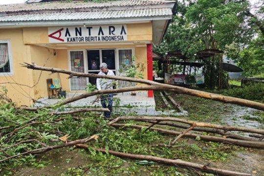 Kota Kupang nyaris lumpuh, sejumlah ruas jalan tertutup pohon tumbang