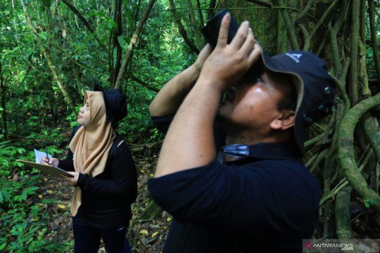 KLHK dorong pengenaan sanksi berat pelanggar aturan konservasi SDA