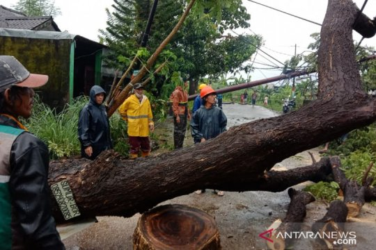 PLTU Jeneponto Sulsel terganggu akibat cuaca ekstrem