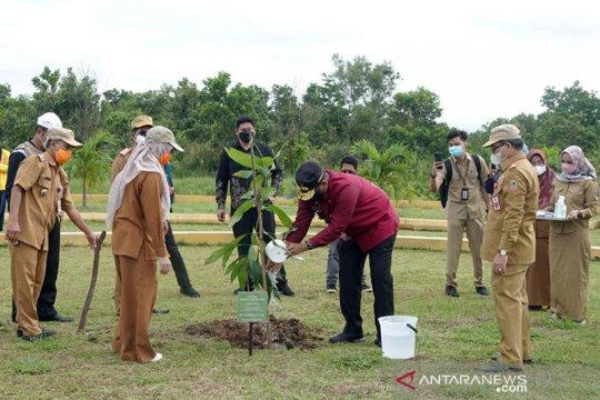 Pemprov Kalsel targetkan tanam satu juta pohon endemik