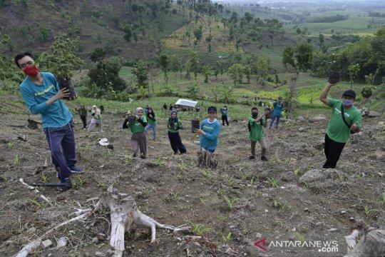 Aksi menghimpun 10 ribu pohon secara daring saat pandemi