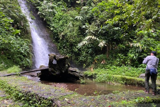 Upaya menjaga habitat elang inspirator Garuda di Gede Pangrango