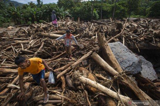 WALHI: Kerusakan lingkungan picu banjir bandang di NTT