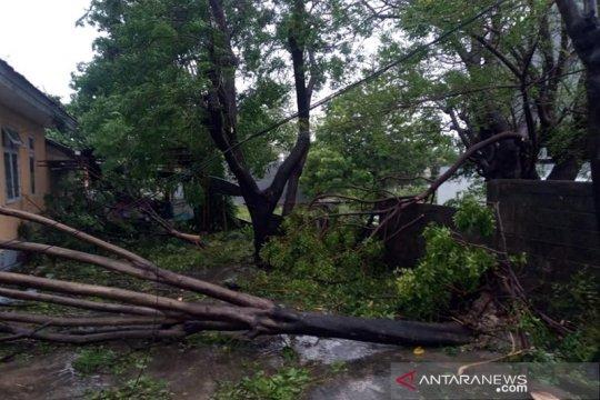 Sabu Raijua terus mendata kerusakan akibat badai Seroja