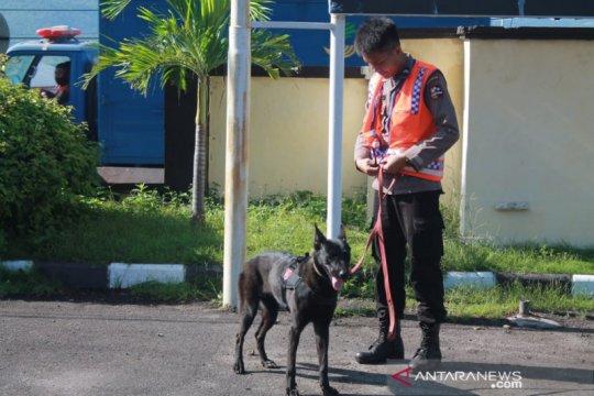 Anjing pelacak dukung pencarian korban bencana di Adonara dan Lembata