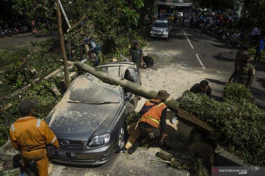 Angin kencang terjang Kota Bandung, lima mobil rusak berat