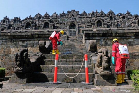Perawatan Candi Borobudur dengan minyak serai wangi