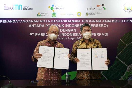 Pupuk Indonesia gandeng Perpadi-Paskomnas untuk program Agro Solution