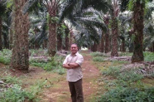 Astra Agro jamin bersikap netral dalam PSU Morowali Utara