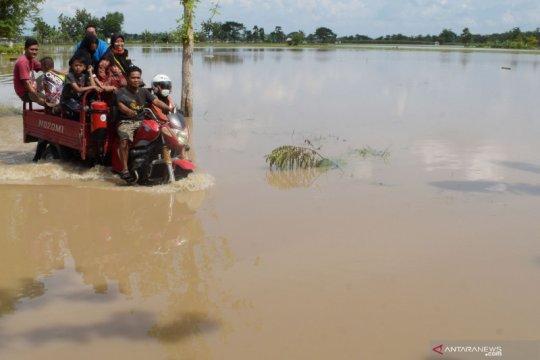 Banjir luapan Sungai Madiun rendam Ngawi