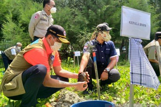 BNPB minta Pemprov Bengkulu teliti segmen megatrhust Enggano