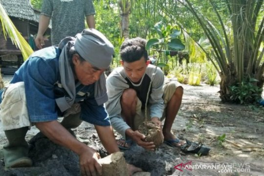 Babel aktifkan UPTD KPHP tanam mangrove 2.240 hektare