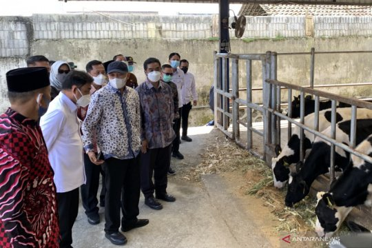 Kemenkop UKM salurkan pembiayaan untuk Koperasi Sae Pujon Rp12 miliar