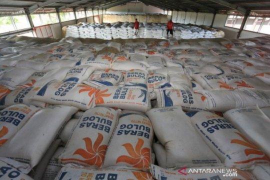 Stok beras 1,2 juta ton, Bulog pastikan tak perlu impor