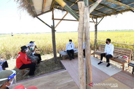 KTNA Indramayu buka suara soal penyebab pupuk subsidi kerap hilang