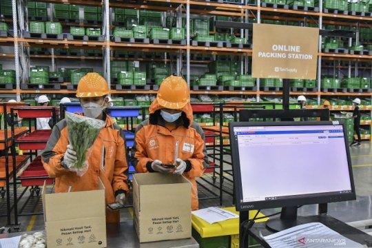Pencapaian ekspor hasil pertanian
