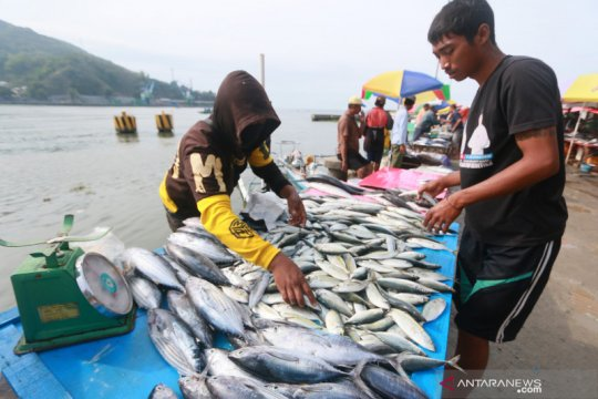 KKP: Kami tidak mungkin memanipulasi harga patokan ikan