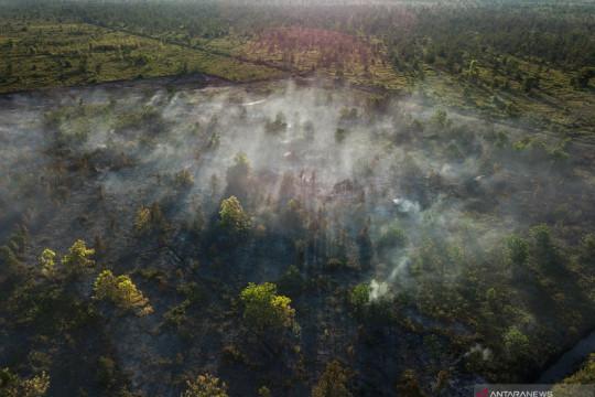 Kebakaran lahan dan pembuatan kanal sebab utama kerusakan lahan gambut
