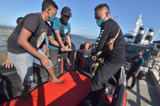 BKSDA Bali tutup aktivitas peragaan lumba-lumba hidung botol di Sanur