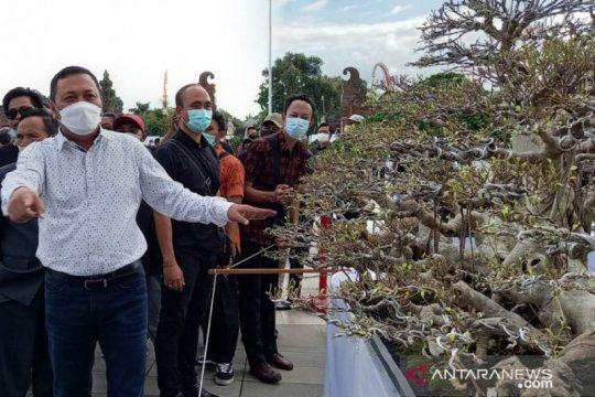 Bupati Gianyar buka pameran bonsai berskala nasional