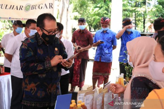 Wagub harapkan usada Bali jadi alternatif pengobatan masyarakat
