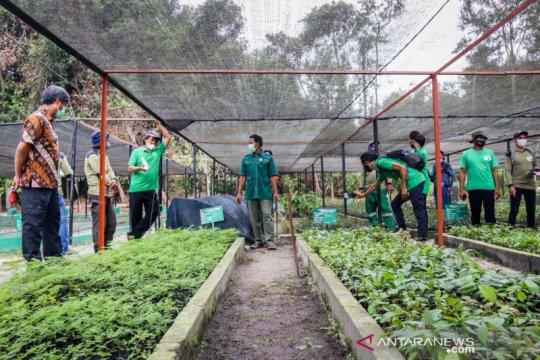 BNF beri pelatihan pembibitan guna sukseskan program sejuta pohon